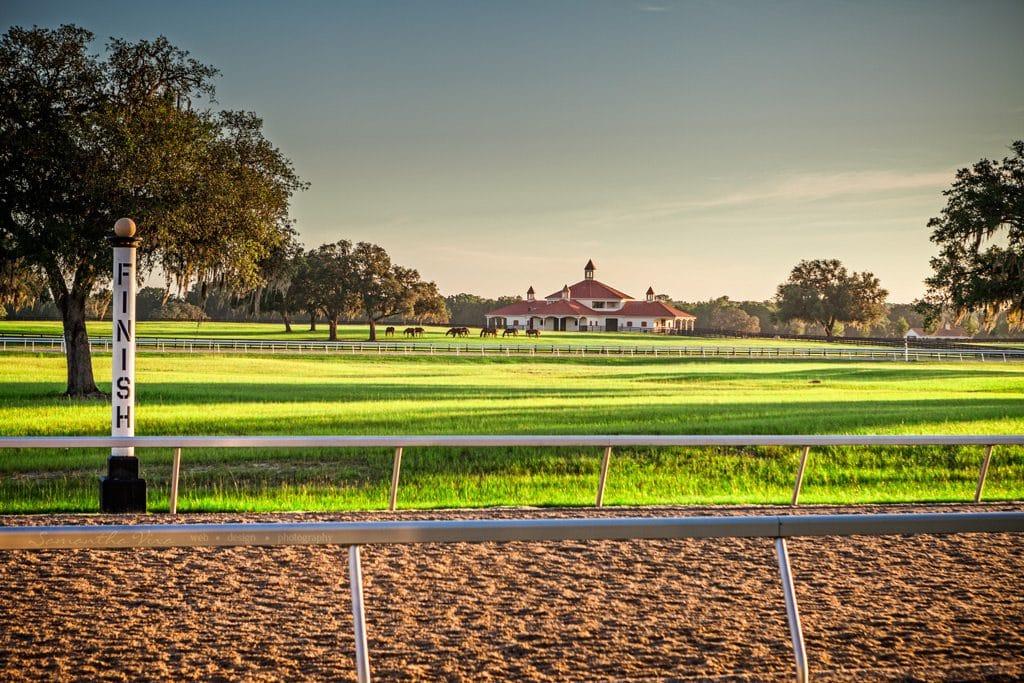 GoldMark-Farms-6